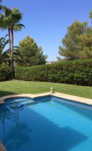 PISCINAS POOL & GARDEN MALLORCA SERVICEs